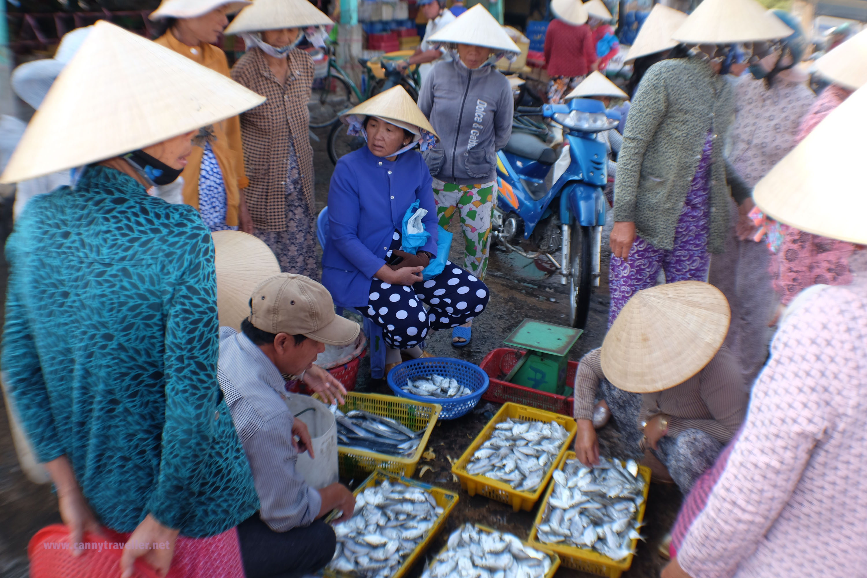 Trading at the fish market at Phan Thiet, Vietnam